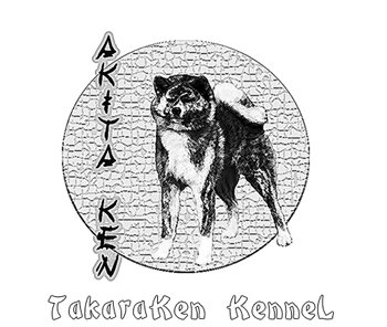 питомник акита ину TakaraKen (FCI-RKF)